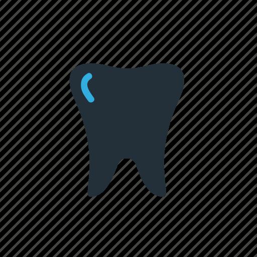 Teeth, dental, dentist icon - Download on Iconfinder