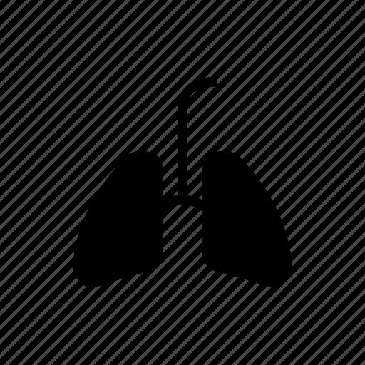 clinic, hospital, kidney, medical, organs icon