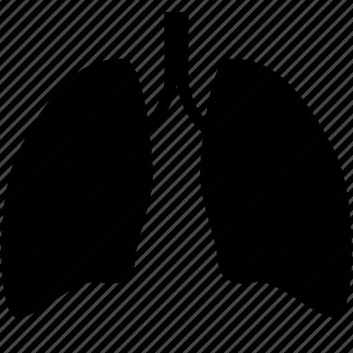 body, breathing, human, lung, organ icon