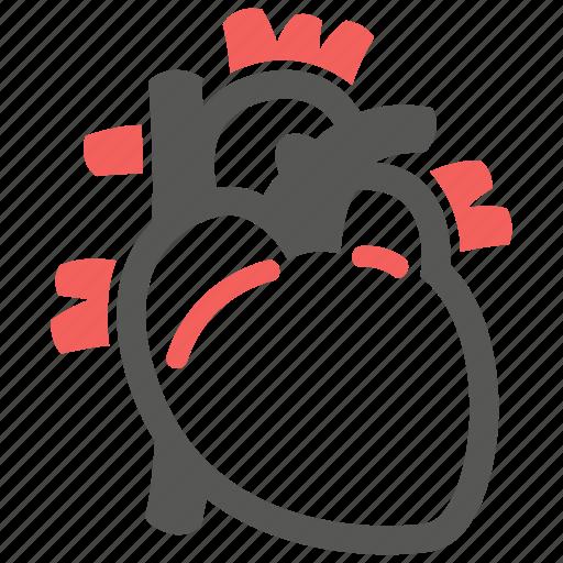 anatomy, cardiology, healthcare, heart, medical, organ, pulse icon