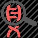 dna, gene, genetic, helix, selection icon