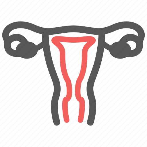breed, female, gynecology, healthcare, sexology, uterus, woman icon