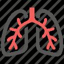 anatomy, body, breath, breathe, lungs, organ, pulmonology icon