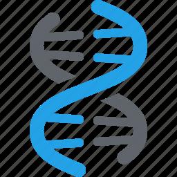 dna, genetics, genome, science icon