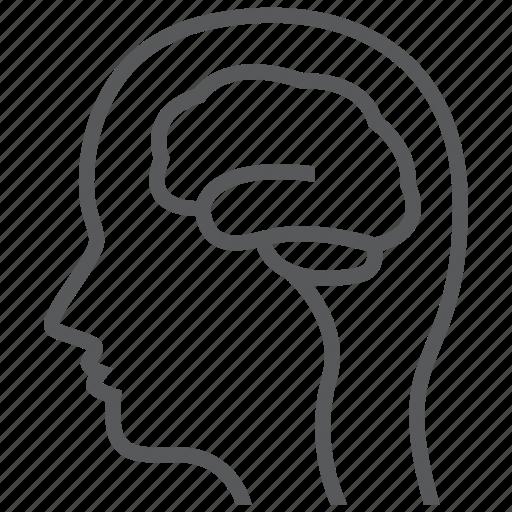 brain, intelligence, mind, neurology, neuroscience, thinking icon