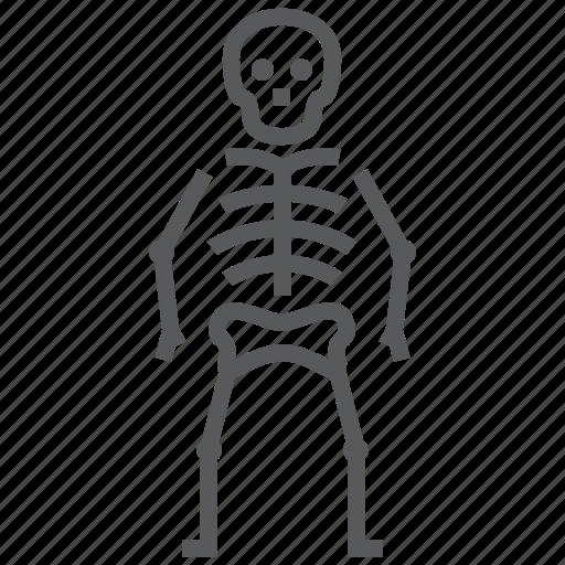 bone, halloween, horror, osteology, skeleton, skull icon