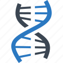 dna, genetics, genome, science icon