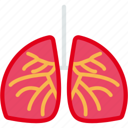 anatomy, health, lungs, patient, respiratory icon