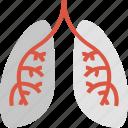 anatomy, breathing, health, healthcare, lungs, medicine, organ icon