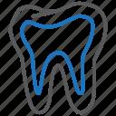 dental, dentistry, teeth, tooth
