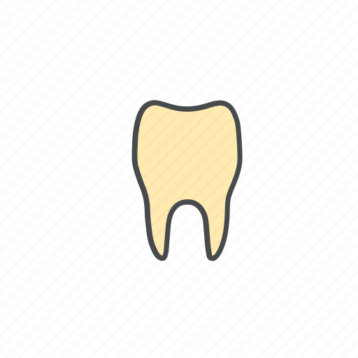 care, dental, dentist, health, medical, mouth, stomatology, teeth, tooth icon