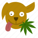 animal, cannabis, dog, good, marijuana, treat, weed