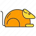animal, guinea pig, lab rat, mouse, rat icon