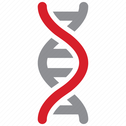 Dna, genetic, molecule, science icon - Download on Iconfinder
