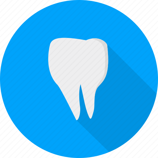 dental, medical, tooth icon