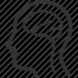 brain, healthcare, human brain, medical, neurology icon