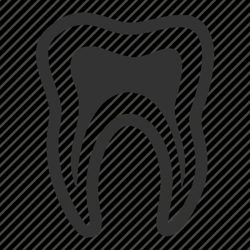 dental treatment, oral health, stomatology, tooth icon