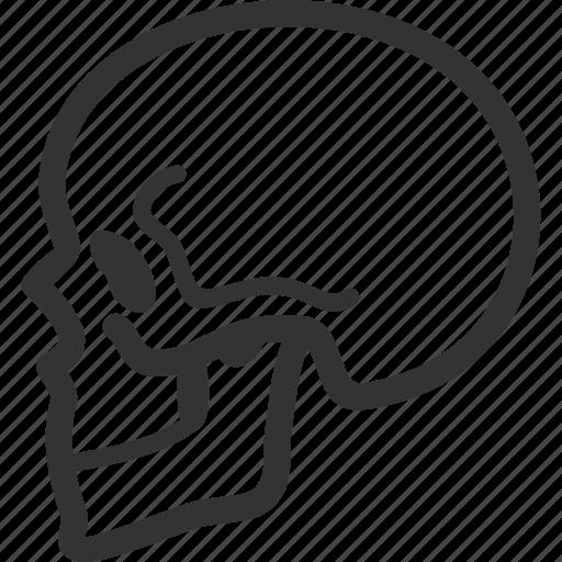 bone, human body, skeleton, skull icon