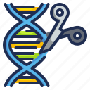 dna, editing, genomics, medical, scissors, technology