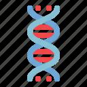 biology, dna, genetics, genome, molecule