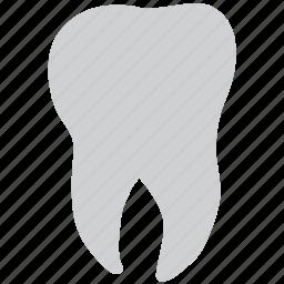 dental, stomatology, teeth, tooth icon