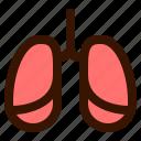 healthy, hospital, lungs, medical, medicine, organ icon
