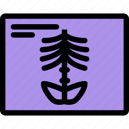 ambulance, dostor, hospital, medicine, treatment, x-ray icon