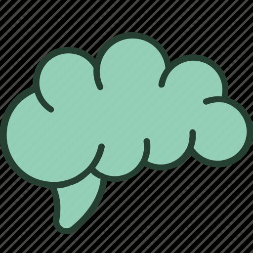 brain, health, healthcare, medical, mental, neurology, psychology icon