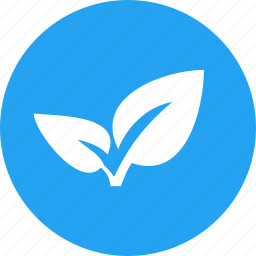 ecological, environmental, foliage, leaf, plant, spring icon