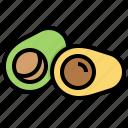avocado, food, fruit, mexico icon