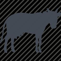 animal, cow, milk, pet icon