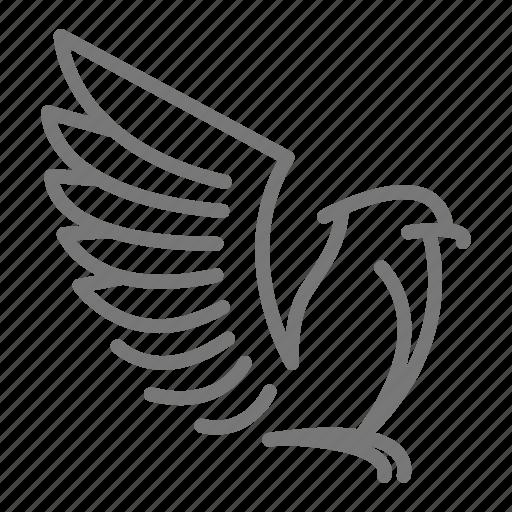 bald, beak, eagle, feathers, wing icon