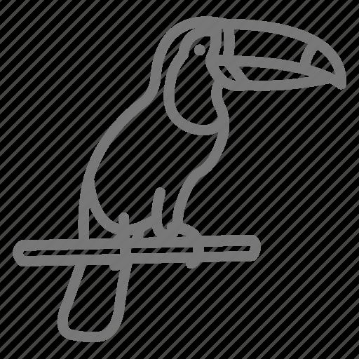 Beak, bird, foul, rainforest, toucan icon - Download on Iconfinder