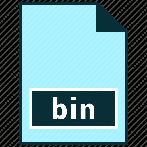 bin, file formats, misc icon