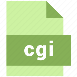 cgi, misc file format icon