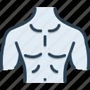 anatomy, body, bosom, breastplate, chest, human, man