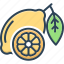 lime, lemon, wedge, slice, green, juice, citrus