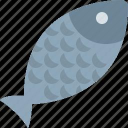 dish, fish, food, water icon