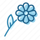 bloom, chamomile, flower, petal, plant, weed icon