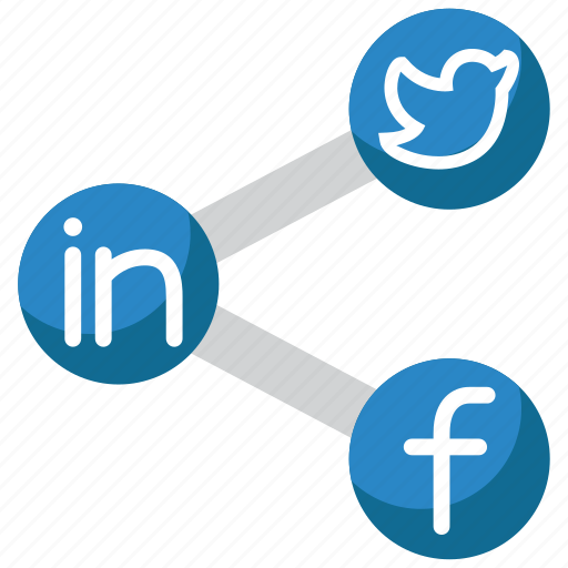 connection, internet, media, network, social icon
