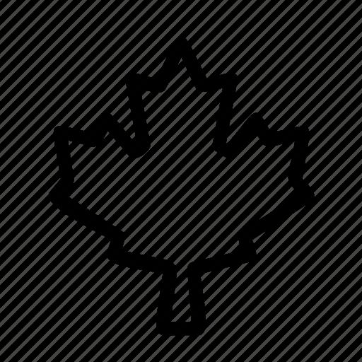 canada, canadian, leaf, maple icon