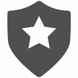 accept, brand, checkmark, excellent, protect, safe, secure icon