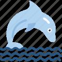 dolphin, ocean, sea icon