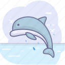 dolphin, fish, ocean, sea icon