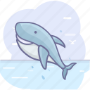 fish, ocean, sea, shark icon