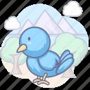 animal, bird, social icon