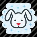 animal, bunny, cute, head icon