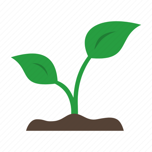 grow, leaf, organic, plant, sprout, sprouting icon