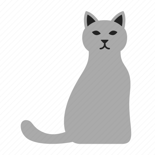 cat, kitty, pet icon