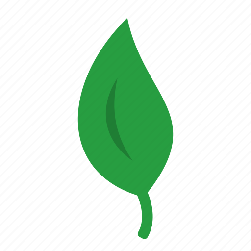 eco, fresh, green, leaf, nature, plant icon